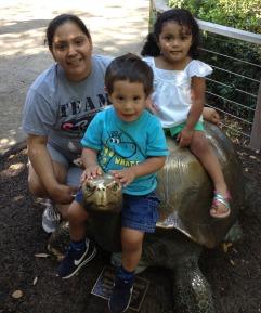 Roxy-Kids-Zoo